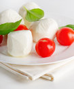 Italian food cheese and tomatoes Stock Image