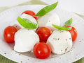 Italian food cheese and tomatoes Royalty Free Stock Photography