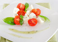 Italian food cheese and tomatoes Royalty Free Stock Photo