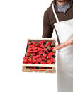 Italian fresh strawberries wooden box Stock Photo
