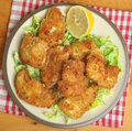 Italian fried chicken fillets in breadcrumbs oregano and parmesan cheese Stock Image