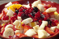 Italian  fruit salad Stock Images