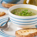 Italian green pea soup traditional with pasta and mint selective focus and square image Stock Photos