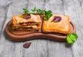 Italian hot crispy toasted panini sandwiches Royalty Free Stock Photo