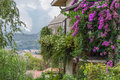 Italian house with bougainvilleas view over the roman village from the little Stock Image