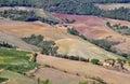 Italian landscape in toscana region Stock Photos