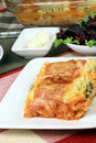 Italian lasagna rolls Royalty Free Stock Photo