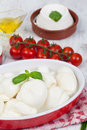 Italian Mozzarella Royalty Free Stock Images