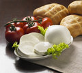 Italian mozzarella cheese Stock Image