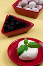 Italian mozzarella cheese with basil on a plate Royalty Free Stock Photos