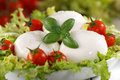 Italian mozzarella cheese with cherry tomato and basil Stock Photos