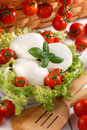 Italian mozzarella cheese with cherry tomato and basil Royalty Free Stock Images