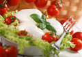 Italian mozzarella cheese with cherry tomato and basil Stock Image