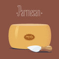 Italian parmesan cheese vector illustration Royalty Free Stock Photo
