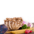 Italian pasta and mushroom sauce ingredients raw over rustic old wood Stock Image