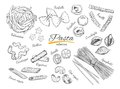Italian Pasta set. Different types of pasta. Vector hand drawn illustration. Isolated objects on white Royalty Free Stock Photo