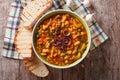 Italian ribollita soup close up in a bowl. horizontal top view Royalty Free Stock Photo