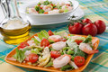 Italian shrimp salad two plates of with shrimps tomatoes artishocke hearts romane lettuce leaves fava beans and pine nuts olive Royalty Free Stock Photo