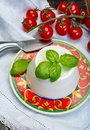 Italian soft cheese, young white ricotta cheese served with fres Royalty Free Stock Photo