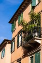 Italian style house with the green windowframes and the palm on the balcony, Verona, Italy - Image