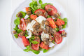 Italian Tomato Salad with Mozzarella cheese Royalty Free Stock Photo