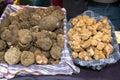 Italian truffle tuscany toscana italy food money smell type Royalty Free Stock Photo