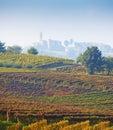 Italian vineyards ( on the background Calosso, Asti, Piedmont) Royalty Free Stock Photo