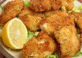 Italien fried chicken fillets Photo libre de droits