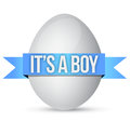 Its a boy egg illustration design over white background Stock Image