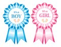 Its a boy and girl rosettes blue pink it s isolated on white studio background Royalty Free Stock Photos