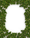 Ivy Border or frame 3D Royalty Free Stock Photos