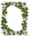 Ivy border with gardenias Royalty Free Stock Photo