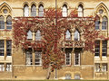 Ivy on Christ Church College Royalty Free Stock Photography