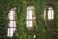 Ivy-clad walls Stock Photos