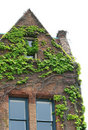Ivy covered brick building Royalty Free Stock Photo