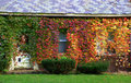Ivy Covered Cottage in Autumn Stock Photos