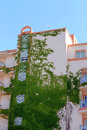 Ivy covered hotel building side view of majorca spain Royalty Free Stock Images