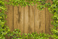 Ivy leaf frame on plank wood wall this picture ia Stock Photo
