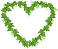 Ivy Leaf heart Royalty Free Stock Photos