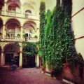 Ivy on the wall in courtyard brick of green and house with arches and balconies Royalty Free Stock Images