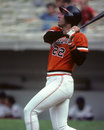 Jack clark san francisco giants slugger image taken from color slide Royalty Free Stock Photography