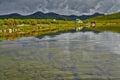 Jack london s lake summer reflexions the magadan area kolyma img Royalty Free Stock Photography