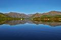 Jack London's lake. Summer, reflexions