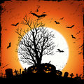 Jack O'Lantern Background Royalty Free Stock Images