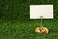 Jack-O-Lantern with blank sign Royalty Free Stock Photo