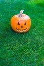 Jack o lantern on green grass halloween time Royalty Free Stock Photos