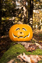 Jack O Lantern in the Haunted Woods Royalty Free Stock Images