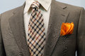 Jacket with brown checkered tie and orange handker Stock Image