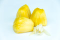 Jackfruit and white champaka on background Royalty Free Stock Images
