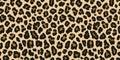 Jaguar, leopard print. Vector seamless pattern. Realistic animal skin background
